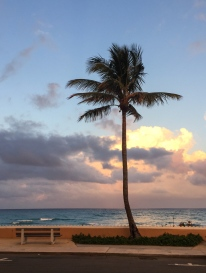 Strolling on Palm Beach at sunset