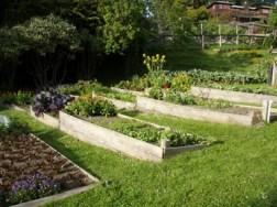 Raised-garden-beds-designs-for-vegetables