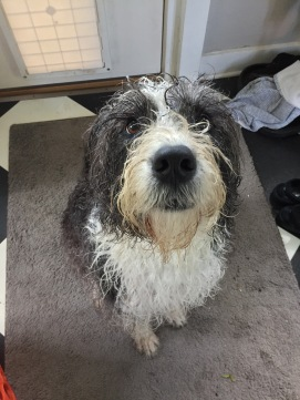 post-bath