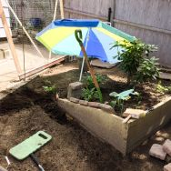 I dug a trench along the raised bed, and made a mortar mixture - one part cement, which I had already, and three parts sand, which I bought (and oh boy was that bag of sand back-breaking heavy!)