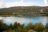 Oyster farms in the countryside between Dubrovnik and Split