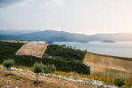 Countryside between Ston and Split