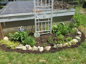 Added some mulch to this little area and a mulch mowing strip too