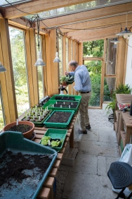Billy in his greenhouse