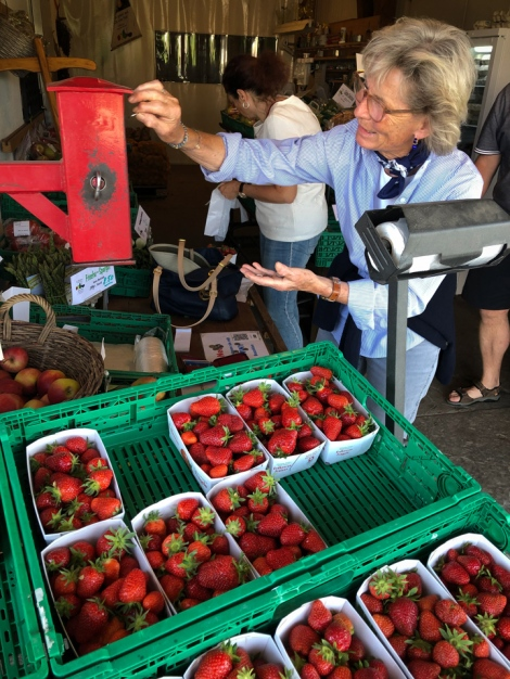 Stopping for strawberries on our way to Taufs