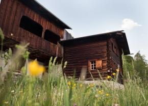 Anne's family cabin